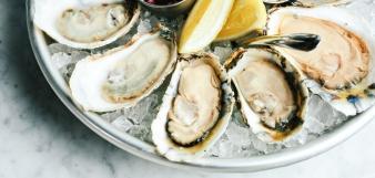 Darling-Oyster-Bar_Oysters_Charlestoncvb