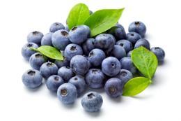 Wild-Blueberry-Balsamic-Vinegar